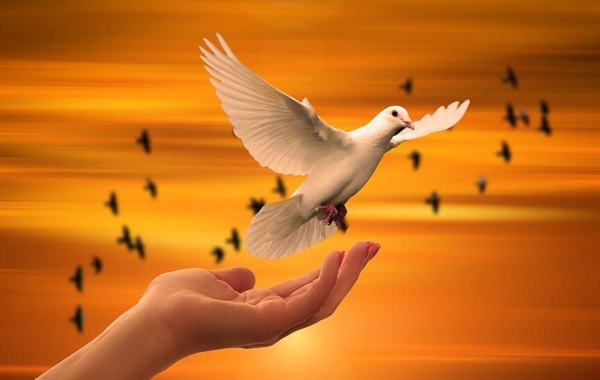 Голубь, летящий в небо, как символ молитвы.